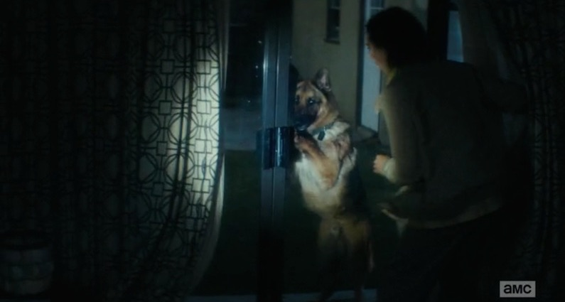 FTWDTT 003 - The Dog (S1E3)